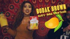 BODAK BROWN (Cardi B Bodak Yellow Parody) – RwnlPwnl