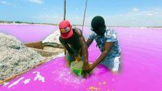 Shocking Things At The  Pink Lake of SENEGAL!